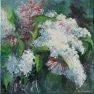 Lilas blanc [Etude - 40 x 40]