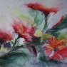 Eclats de fleurs [Aquarelle - 30 x 40]